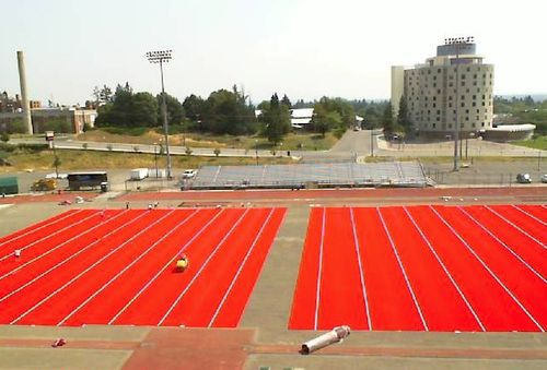 Red-turf-Eastern