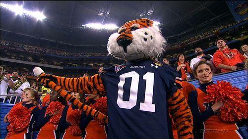 Auburn Tiger